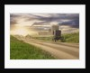 Amish Buggy on Road to Farm by Corbis