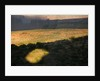 Arches National Park by Corbis
