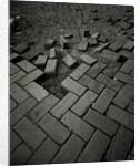 Brick Sidewalk by David Roseburg