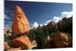 Bryce Canyon, Utah by Corbis