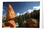 Bryce Canyon, Utah by Corbis