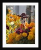 Day of the Dead Decorations by Corbis