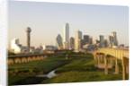 Dallas Skyline by Corbis