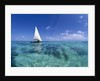 Dhow on Clear Seas by Corbis
