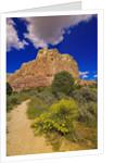 Box Canyon Trail at Abiquiu by Corbis