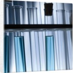 Test Tubes by Corbis