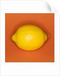 Lemon by Corbis