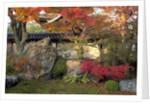 Autumn Foliage in Japanese Garden by Corbis