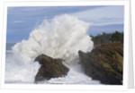 Waves Crashing on Rocks by Corbis