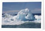 Icebergs in Disko Bay by Corbis