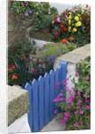 Blue Garden Gate in Spring Garden by Corbis
