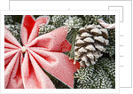 Christmas Decoration on Tree Covered with Frost by Corbis
