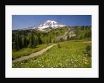 Mount Rainier National Park by Corbis
