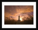 Yaquina Head Lighthouse at Sunset by Corbis