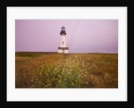 Yaquina Head Lighthouse by Corbis