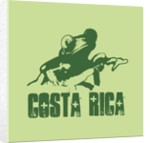 Costa Rica by Corbis