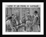 Illustration of Cato Showing Figs from Carthage to the Roman Senate by Corbis