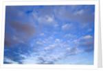 Cumulus Clouds Near Colorado River's Horseshoe Bend by Corbis