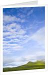 Green Hills Under Cumulus Clouds in Canada by Corbis