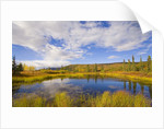 Cumulus Clouds Above Fall Tundra by Corbis