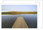 Floating Wooden Dock on Alaskan Lake by Corbis