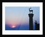 Stag Column by Corbis