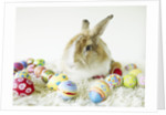Bunny Rabbit Sitting Among Easter Eggs by Corbis