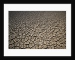 Eroding Ground of Desert by Corbis