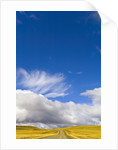 Clouds above Rural Road by Corbis
