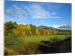 White Mountains by Corbis