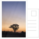 Sunset Over the Busanga Plains by Corbis