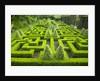 Knot Garden by Corbis
