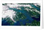 Glaciers Melting into Glacier Bay by Corbis