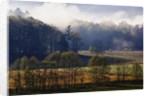 Fog Lifting from Cades Cove by Corbis