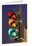 Bicycle Traffic Light by Corbis