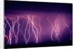 Abundance of Lightning Strikes near Tucson by Corbis