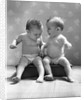 1930s 1940s Twin Babies Wearing Diapers Together Sitting On A Bench Side By Side Studio by Corbis