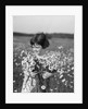 1920s Girl In Meadow Holding Bunch Of Daisies by Corbis