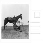 1920s 1930s Cowboy Sitting Against Horse Leg Strumming Guitar and Whistling by Corbis