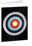 Still Life Of Archery Target by Corbis