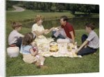 1960s Family Mother Father Daughter And Two Sons Picnicking In Park Outdoor by Corbis