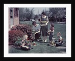 1950s Suburban Family Gardening Together In The Springtime by Corbis
