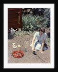 1950s Woman Kneeling In Garden Planting Seeds In Soil by Corbis