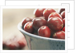 Cranberries in a bowl by Corbis