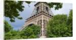 Eiffel Tower and Trees by Corbis