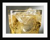 Close-up of Cider on Ice by Corbis