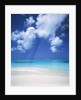 Exuma Island Beach by Corbis