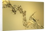 Abstract Shape Formed by Splashing Water by Corbis