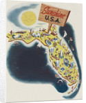 Florida the Sunshine State by Leo Rackow