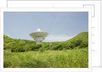 Radio Telescope near Point Udall, St. Croix by Corbis